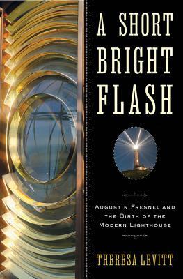 A Short Bright Flash By Levitt, Theresa